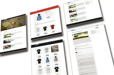 WordPress šablona zdarma